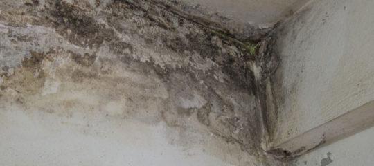Fuite d'eau dans une maison